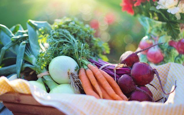 食べ物を我慢するとストレス!我慢しないと太る!健康的に痩せる秘訣?